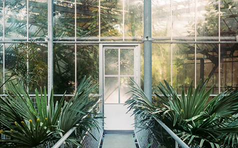 Transparent edge grinding tempered glass for glass greenhouse
