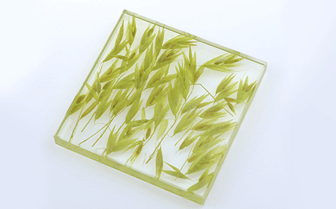 Custom size yellow wheat decorative art laminated glass